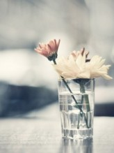 Flowers-in-drinking-glass.-e1360861641678